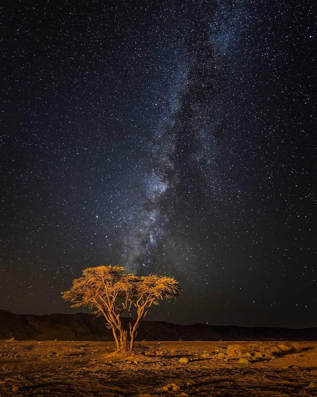 The Negev Desert At Night Night Landscape Desert Aesthetic Stary Night