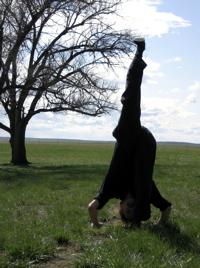 yin yoga poses  yin yoga poses yin yoga yin yang yoga