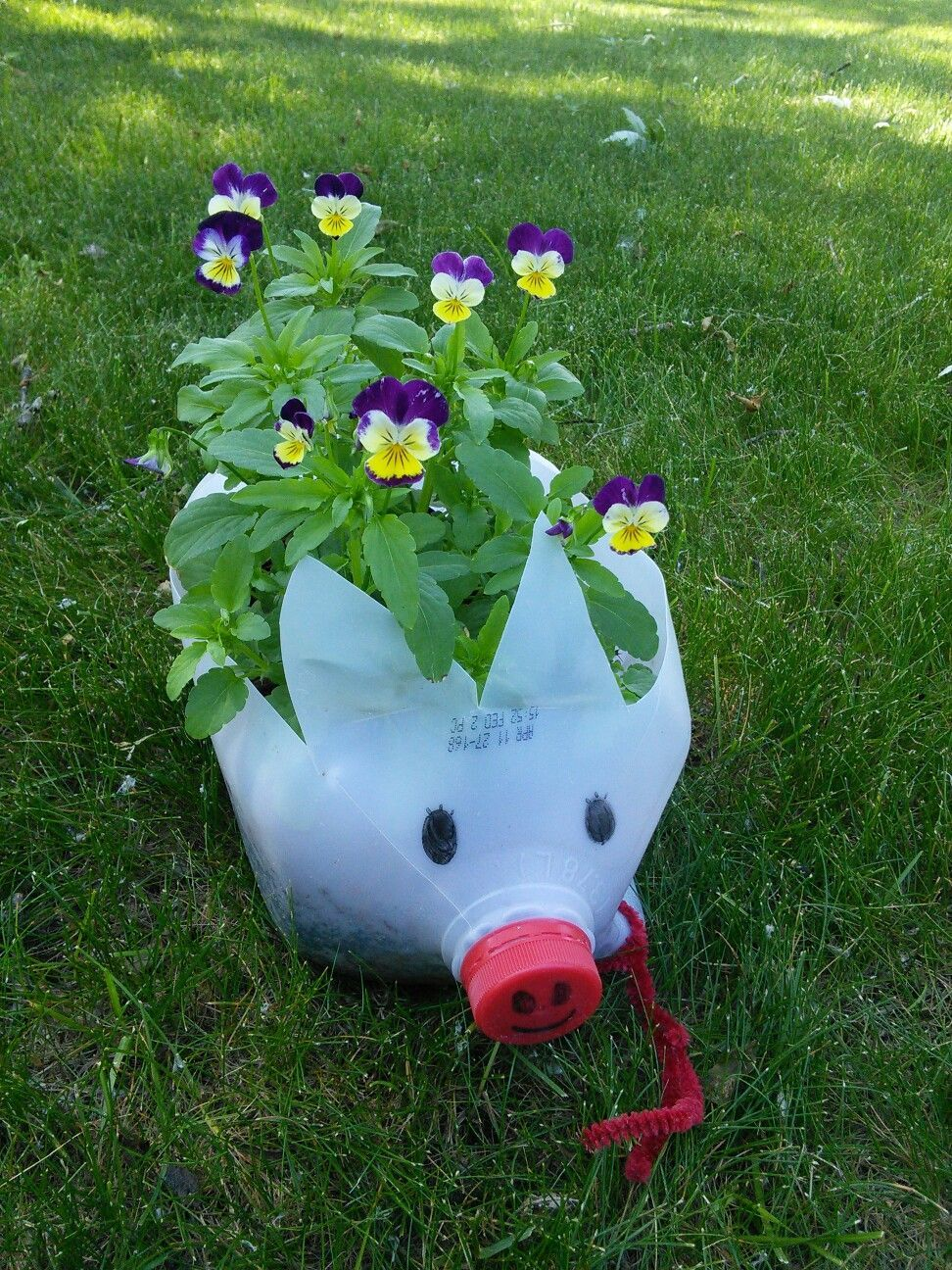 My piggy was born from a milk jug recycle a milk jug into