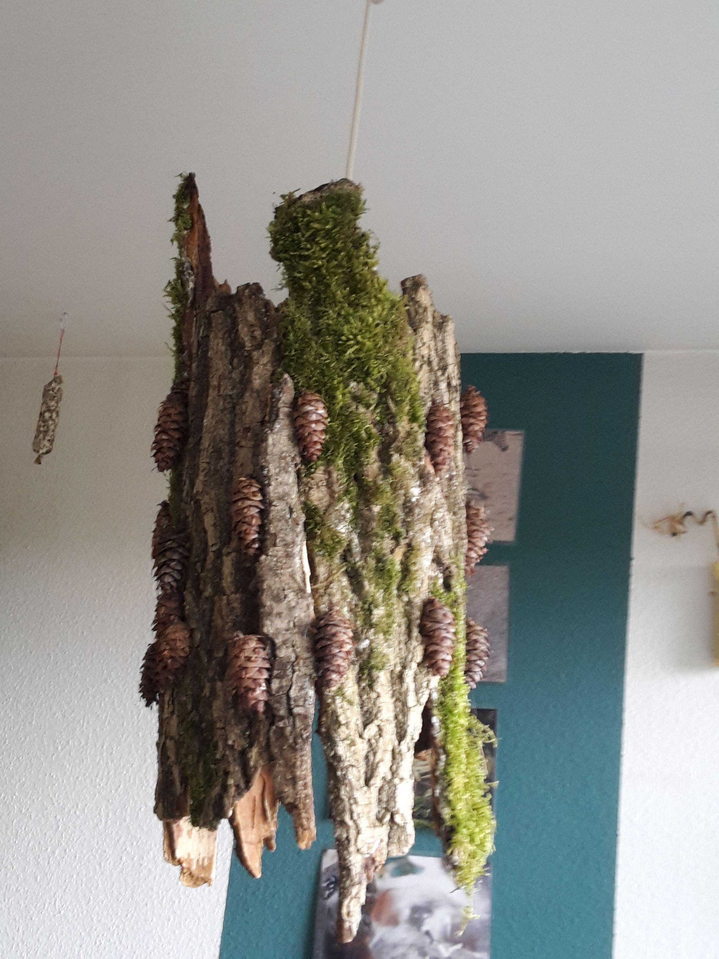 selbst gebastelte lampe aus baumrinde crafts pinterest baumrinde lampen und rinde. Black Bedroom Furniture Sets. Home Design Ideas