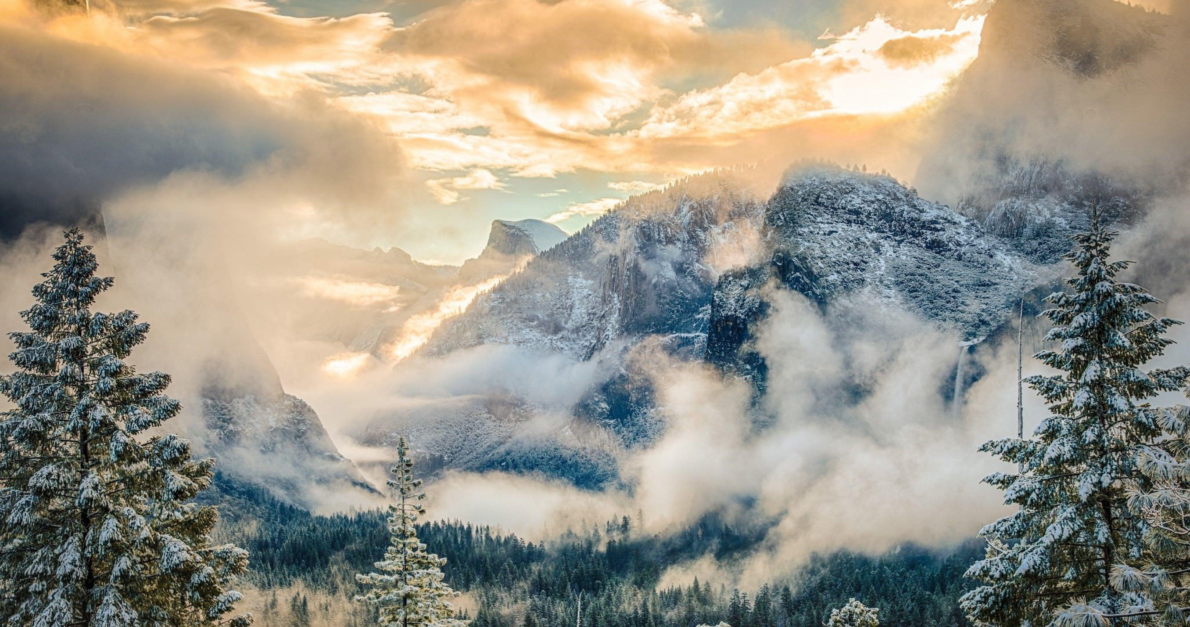 Yosemite National Park 4k Ultra Hd Wallpaper Nature Wallpaper National Parks Park Forest