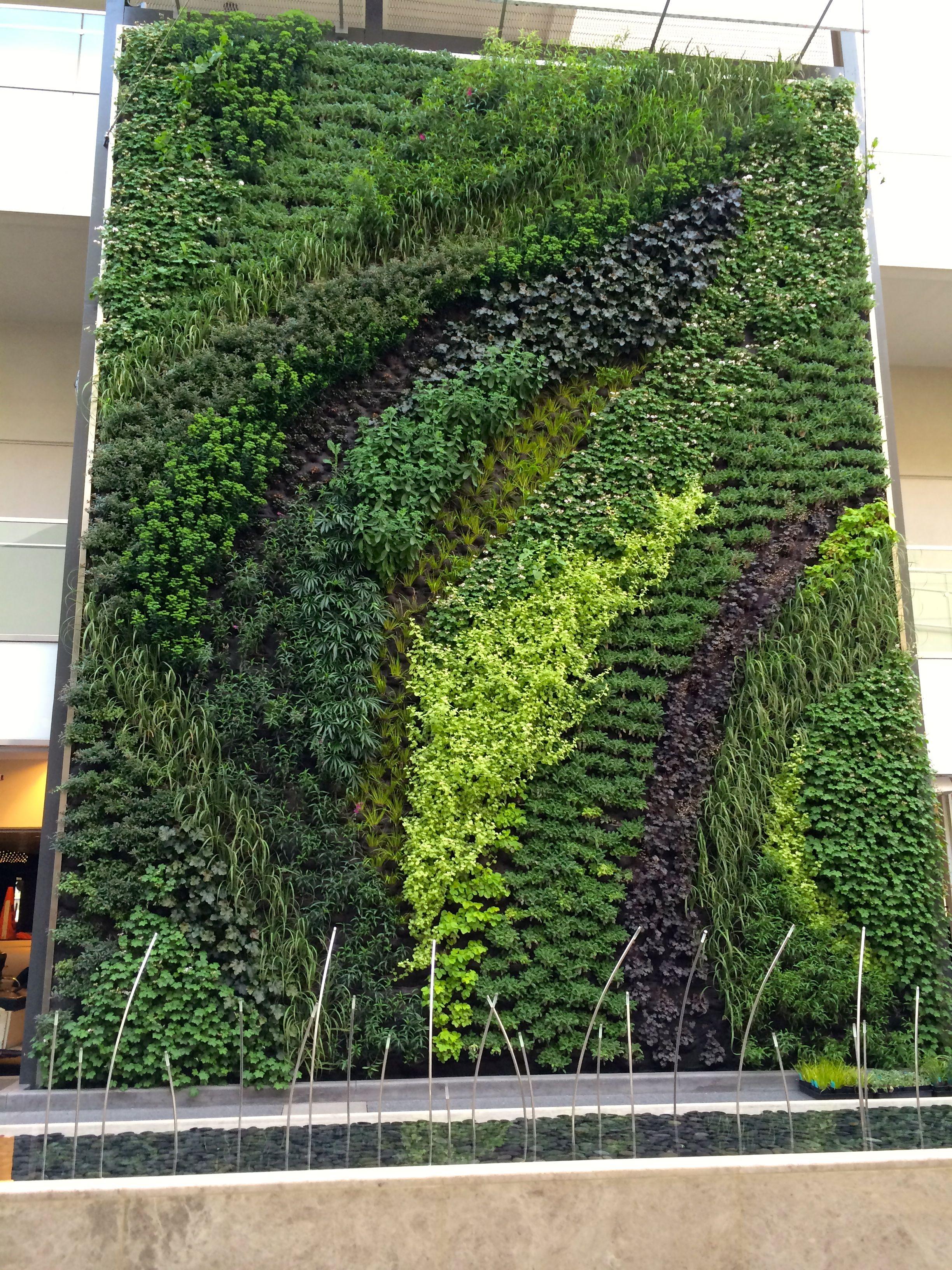 Westfield Century City Living Wall, Vertical Garden, Green Wall   Habitat  Horticulture