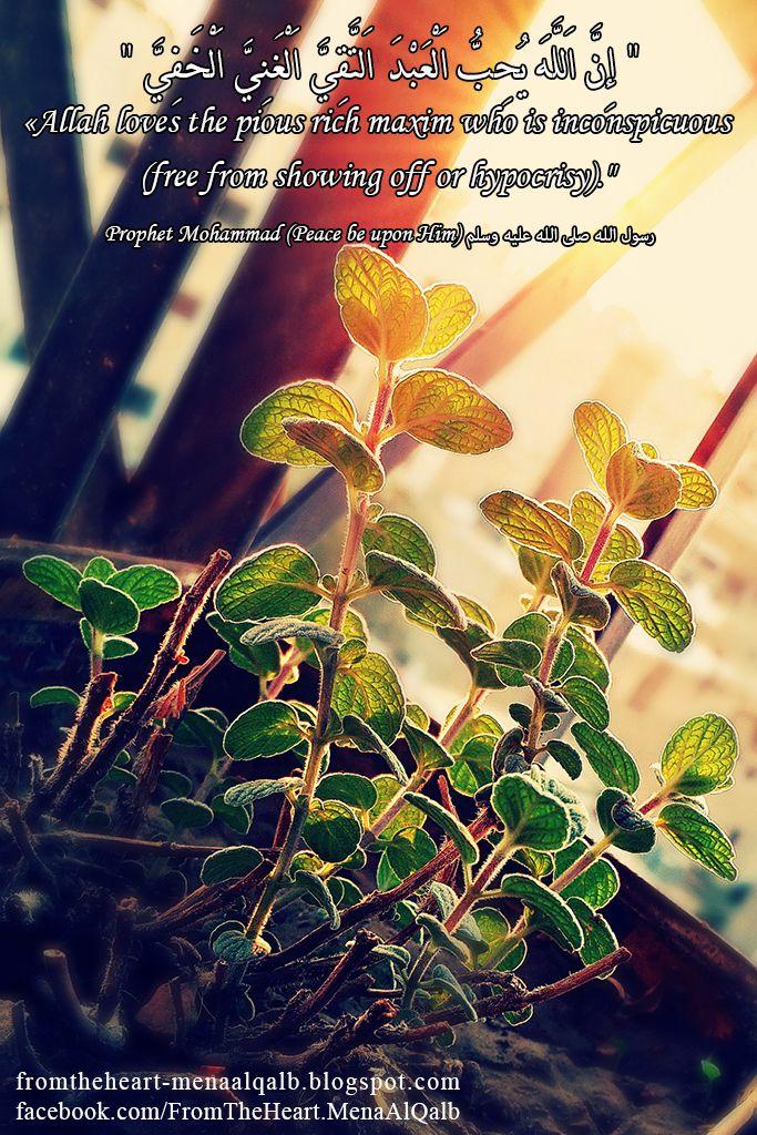 يوميات رمضان 25 Ramadan Diaries Allah Love Ramadan Movie Posters