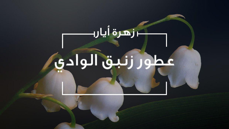 زهرة أيار زنبق الوادي وأجمل عطوره Goldenscent Magazine مجلة قولدن سنت Plants