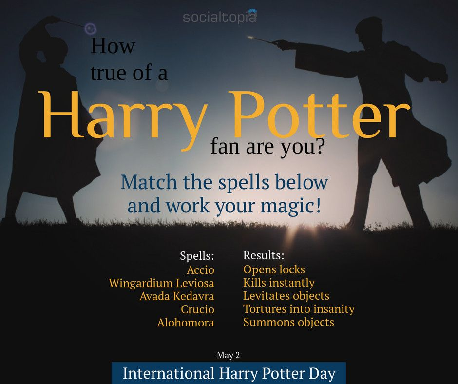 Team Hufflepuf All Day Socialtopia Socialmediamanager Motivation Digitalmarketing Fitness Harry Potter Day Harry Potter Books Series Jk Rowling Books