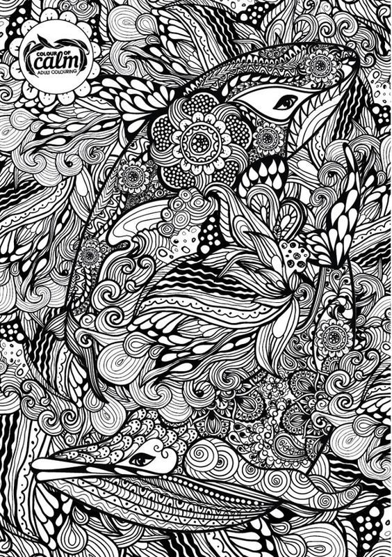 Pin by Barbara on coloring dolphin, whale, shark Pinterest Zen - copy coloring page of a tiger shark