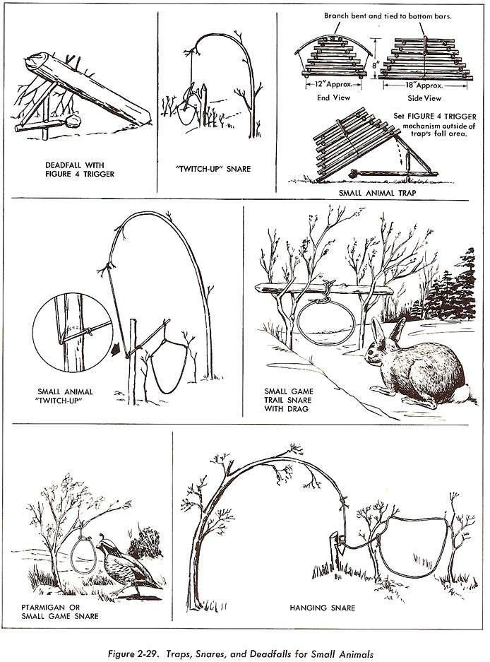 Wilderness Survival Techniques Giode, food, gear, medicine, Tools ...