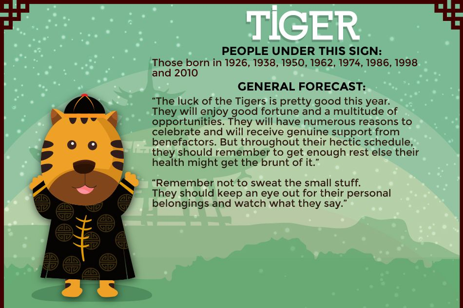 The Tiger in the Year of the Sheep