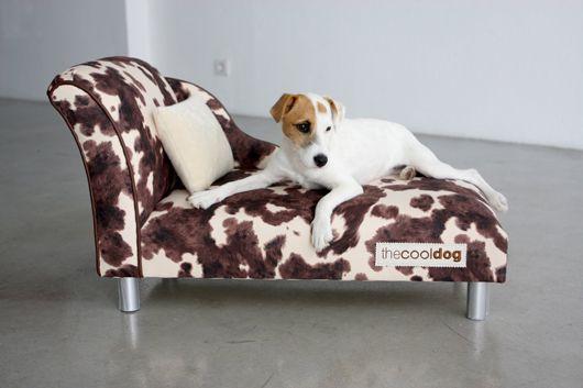 Muebles de diseño para mascotas chic