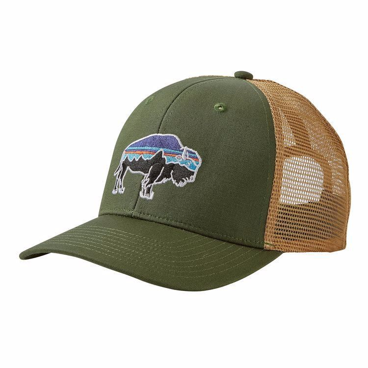 371e63a3749 Patagonia Fitz Roy Bison Trucker Hat in 2019