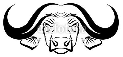 af2c8a85e Animals For > African Buffalo Head Drawing | buffalo | African ...