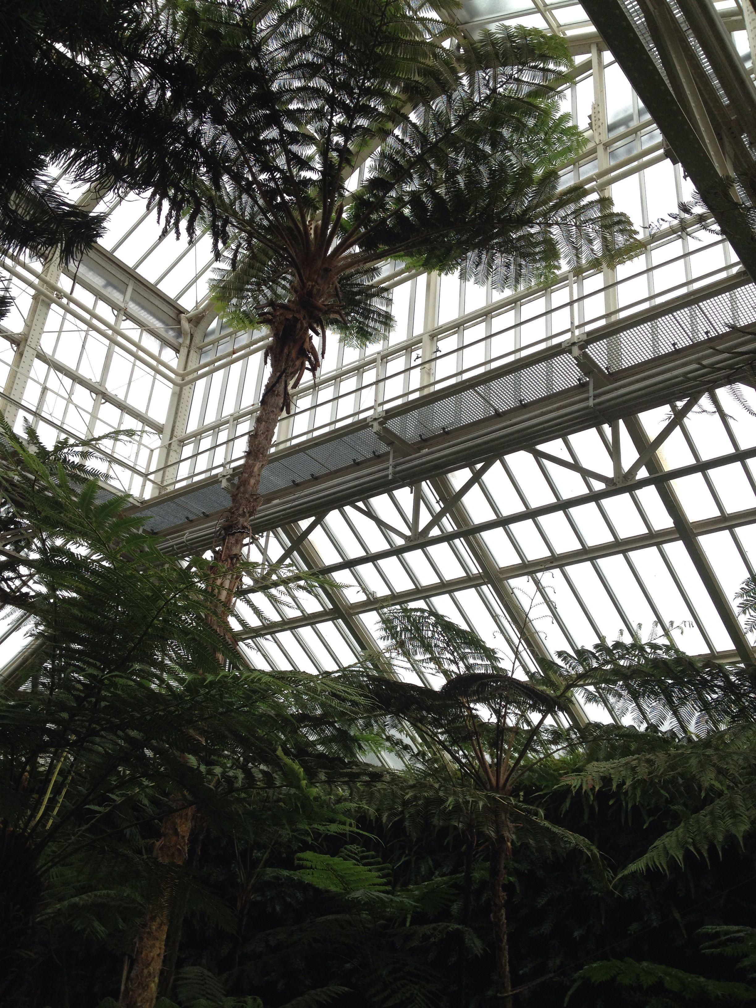 Botanischen Garten Berlin Dahlem