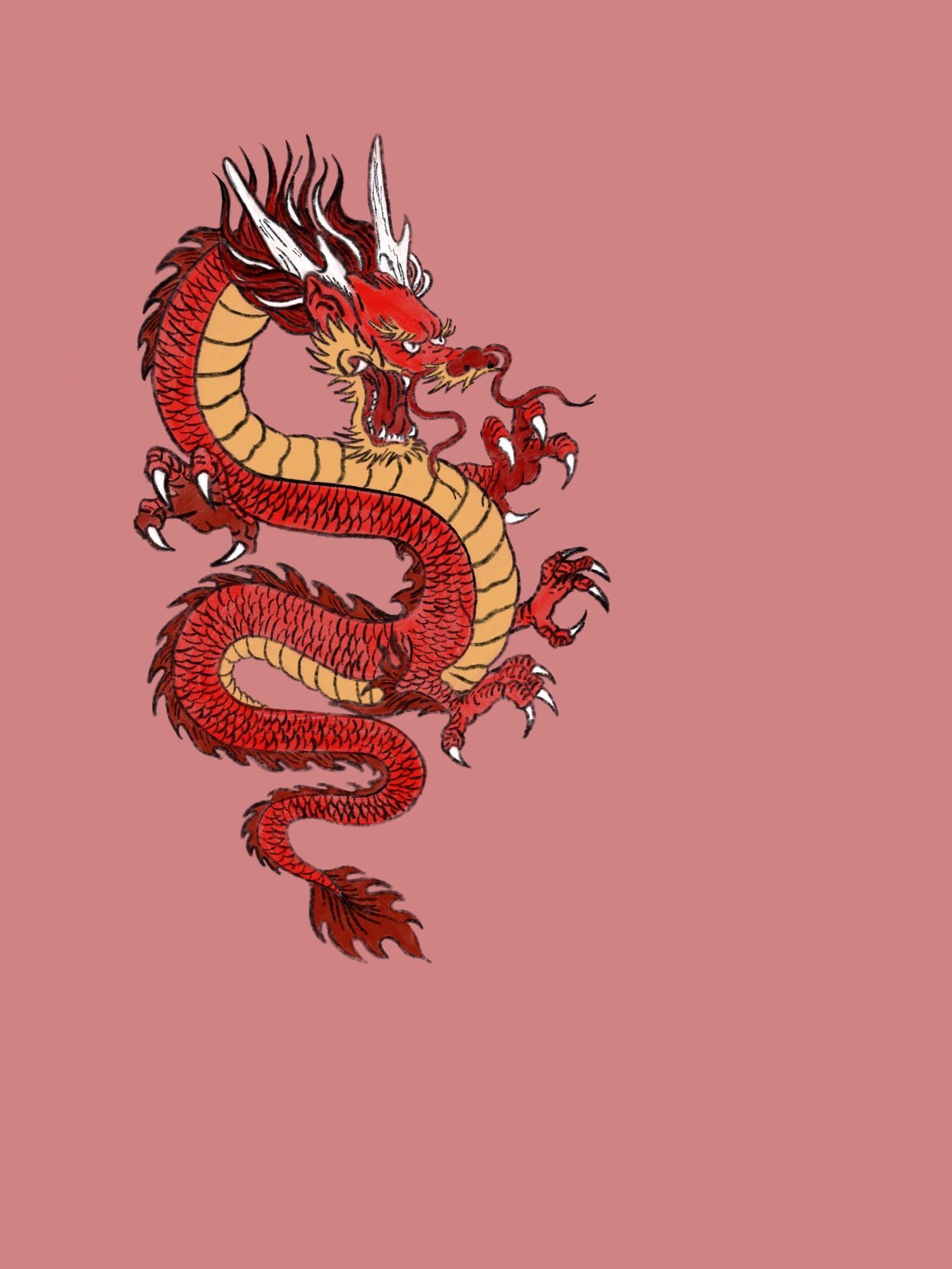 Artwork japanese dragon in 2020 Japanese dragon, Dragon