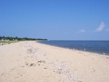 Nothing Like Cove Point Beach A Private On The Chesapeake Bay View Towards Lighthouse