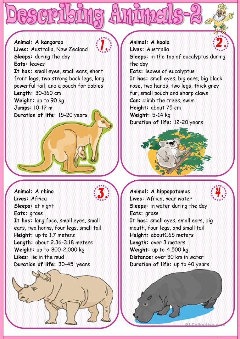 Describing animals 2 | Animal lessons, Animal writing, Animal ...