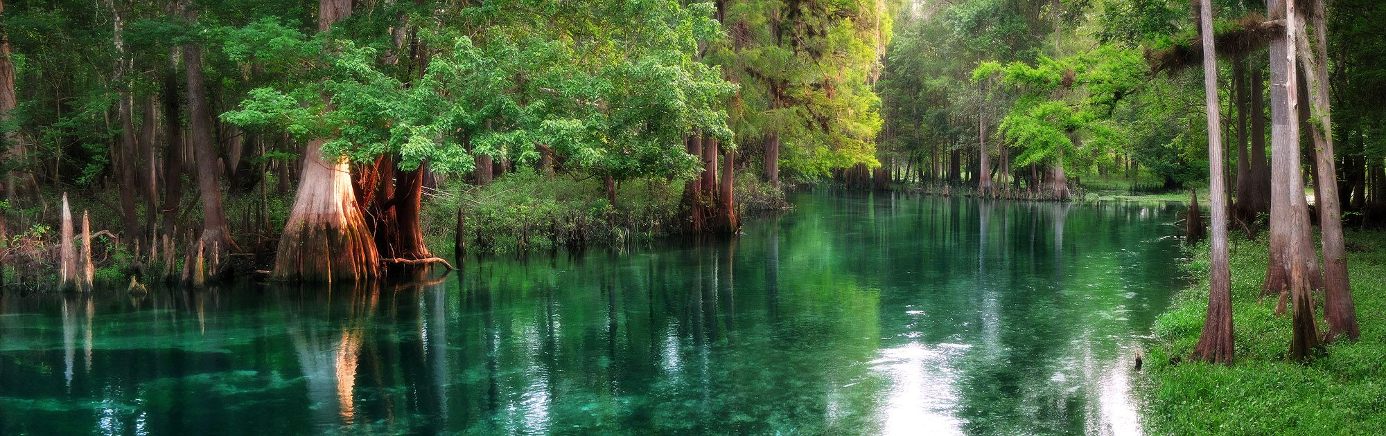 Central Florida's SpringFed Ichetucknee River at Dawn [OC