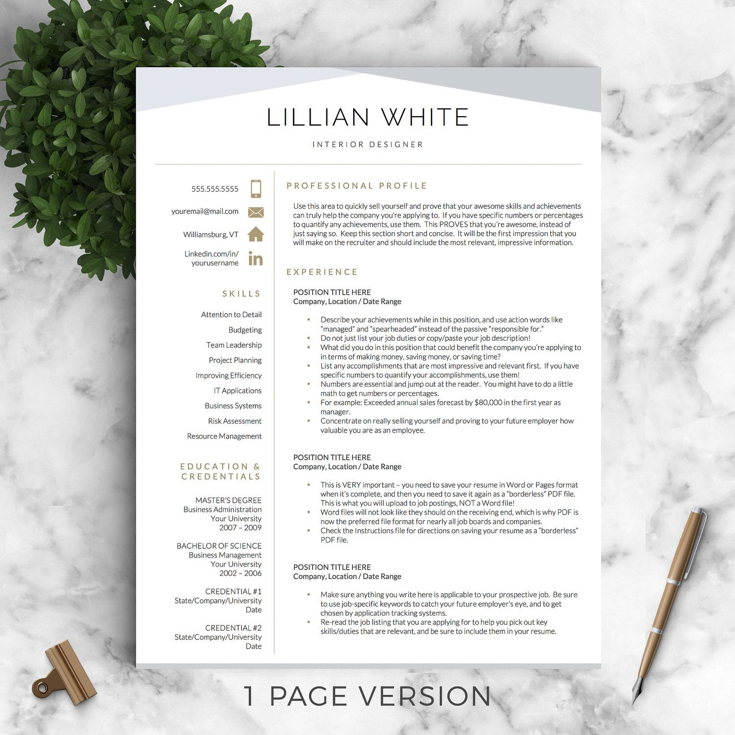 Professional Resume Modern Resume Professional Resume Template