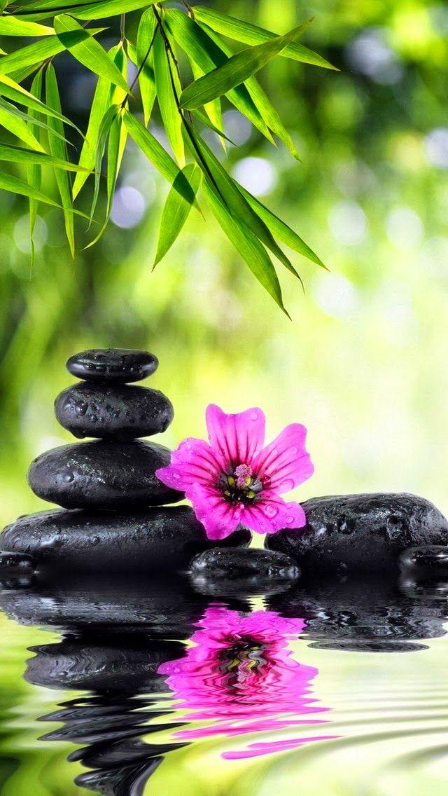 Le Blog De Titou A La Recherche Du Bonheur Spirituality In 2018