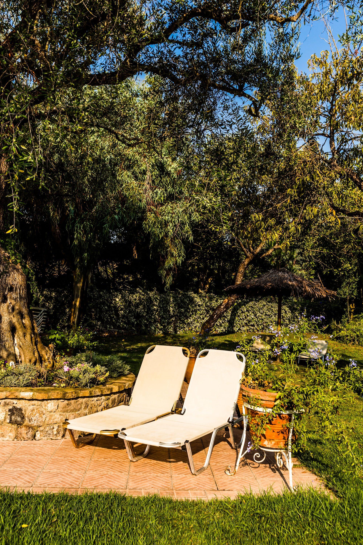 Sunbathing under the olive tree at Spiti Prifti Apartments! | Spiti ...