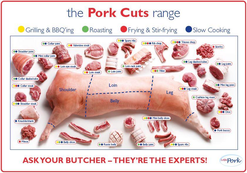 Pork Cuts Range Poster Recipes Pinterest Pork Free Range And