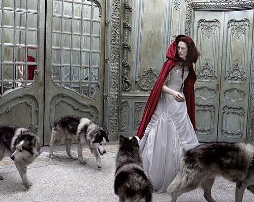 Little Red Riding Hood & a pack of Wolves