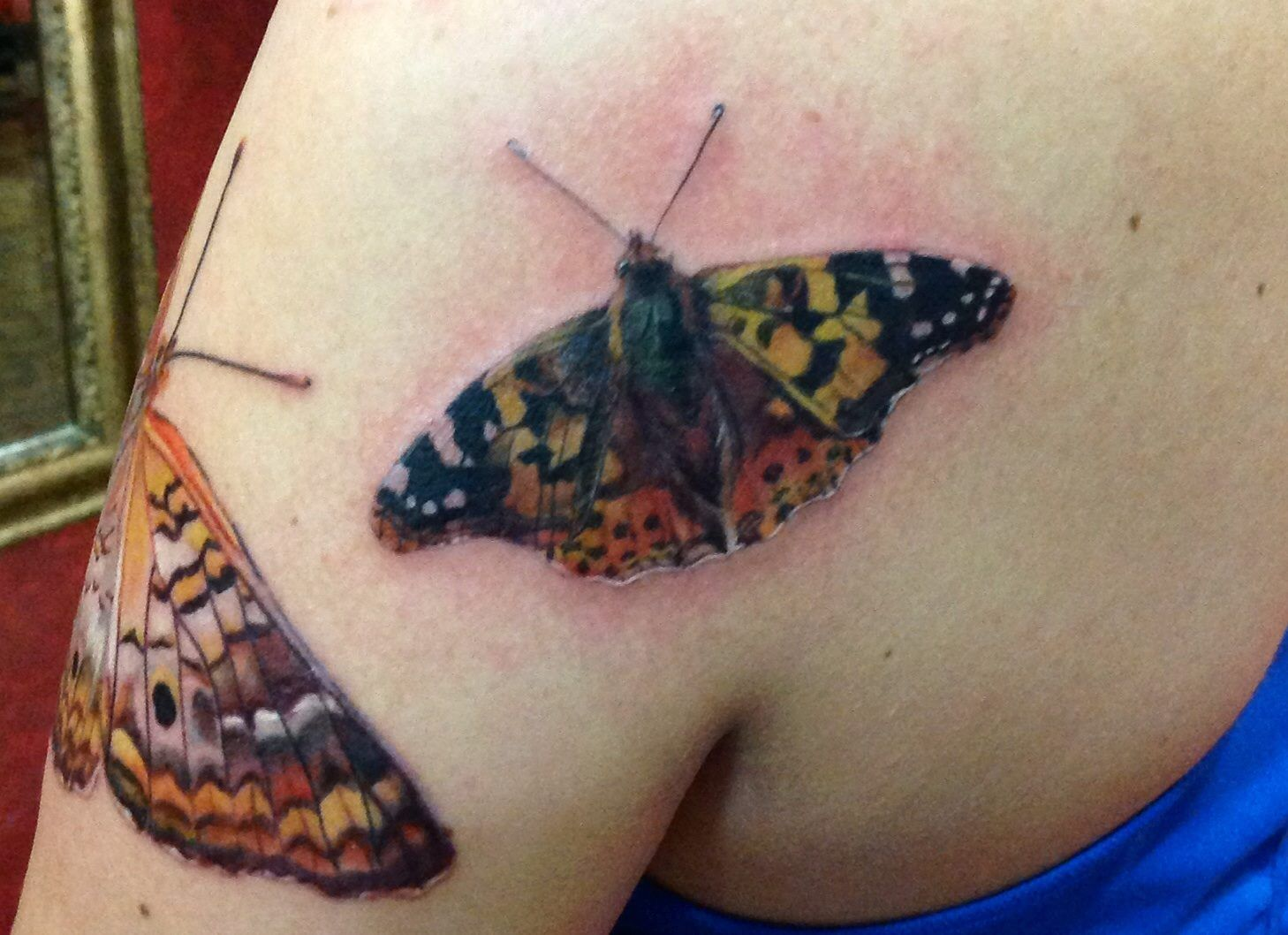 4th Butterfly Tattoo (these are on me) - this one is the Painted Lady Butterfly - realistic butterfly tattoo