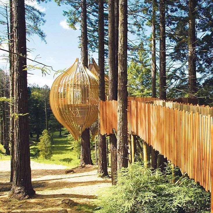 The Redwoods Treehouse in New Zealand was commissioned as