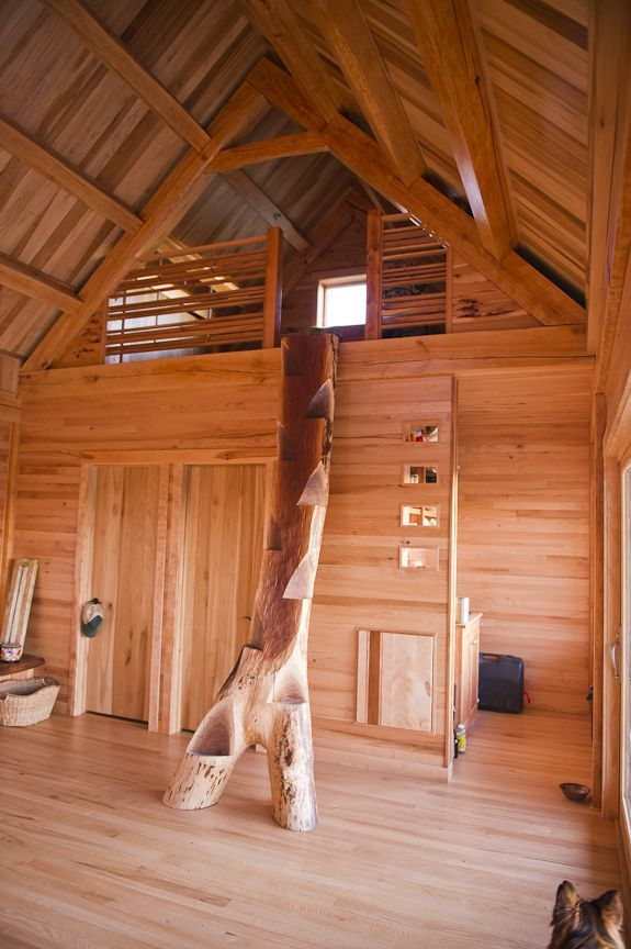 Natural Tree Loft Ladder Need It Small E Staircase Ship