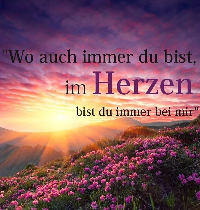 Du auch,Liebling Daizo💗. - #auchLiebling #Daizo #du #himmel