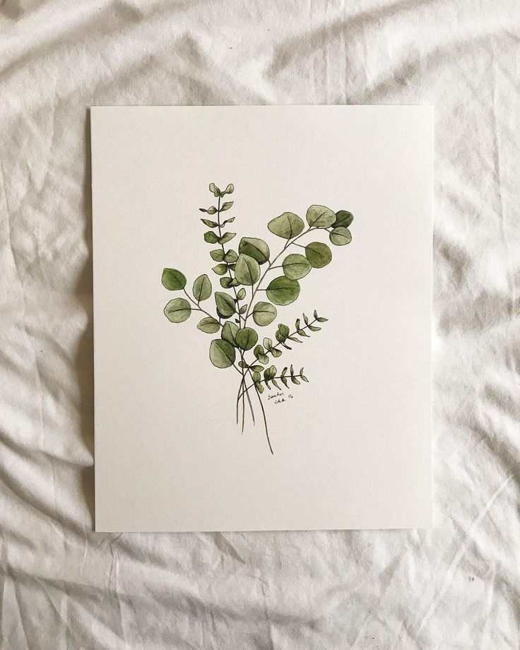 This simple, neutral eucalyptus print is a wonderf… – #Eucalyptus #illustratio…,  #Eucaly…