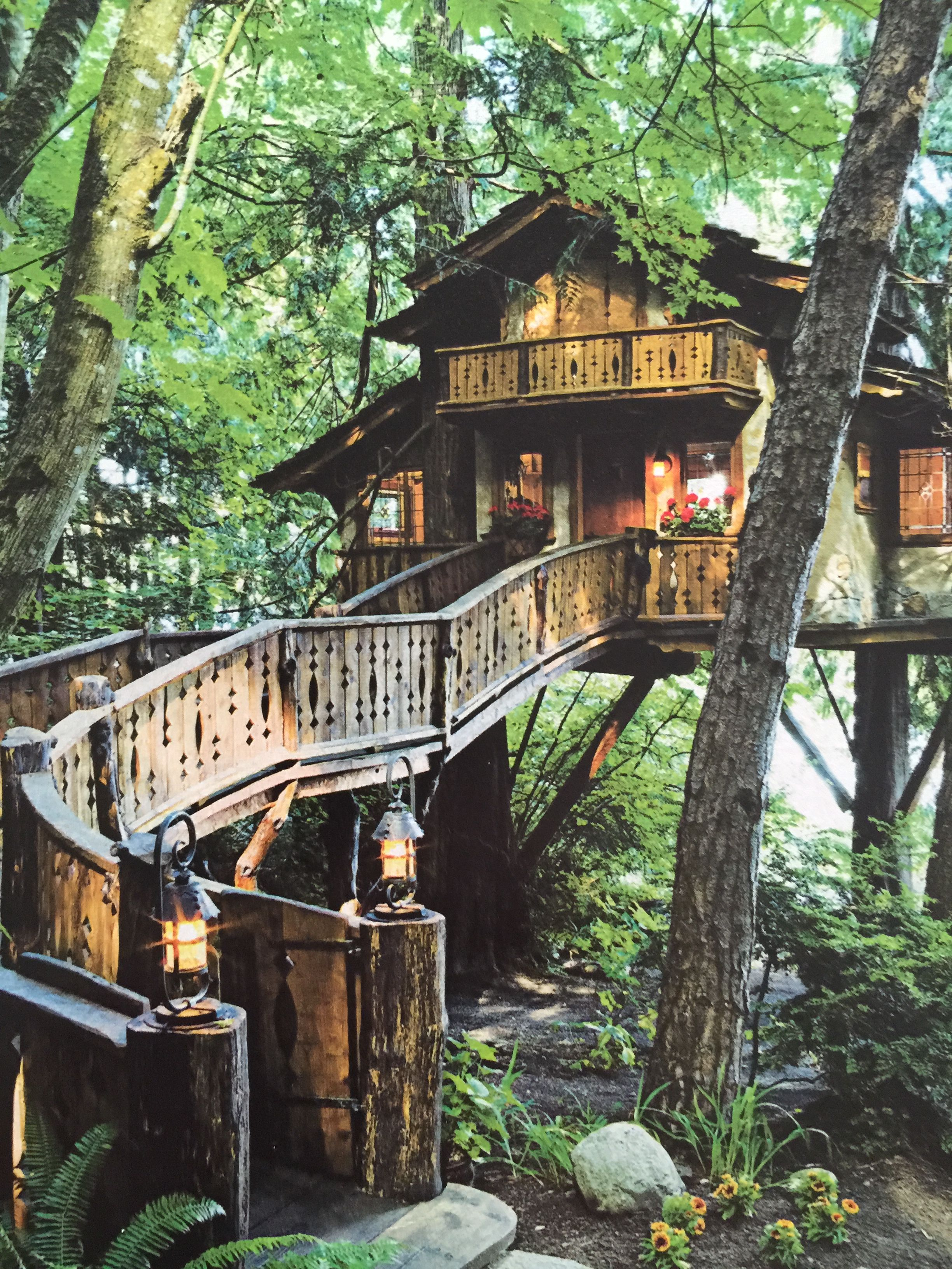 Pin By Douglas Sandberg On Tree Houses - Pinterest -