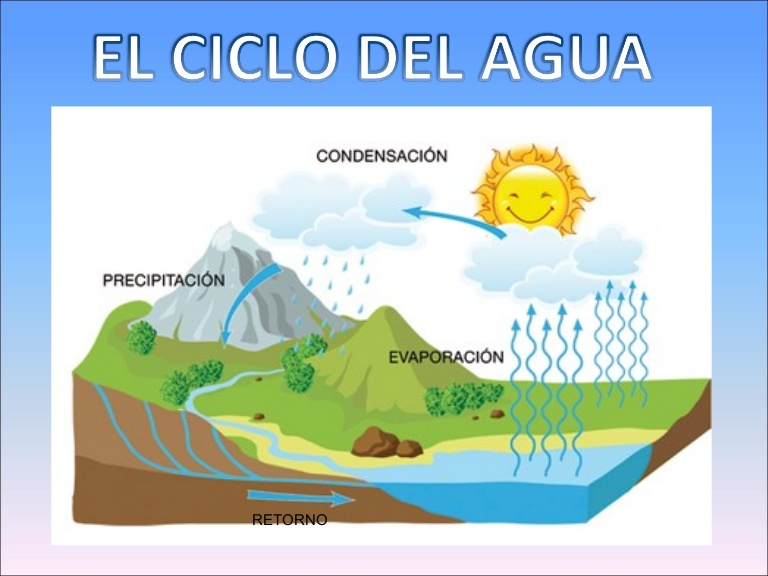 Ciclo Del Agua Y Contaminacion Buscar Con Google Activities Homeschool Water Drawing