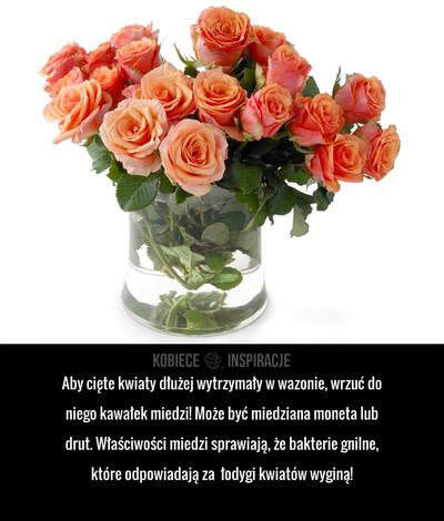 Aby Ciete Kwiaty Dluzej Wytrzymaly W Wazonie Wrzuc Do Niego Kawalek Miedzi Moze Byc Miedziana Moneta Lub Drut Wlasciwosci Miedzi Glass Vase Vase Plants