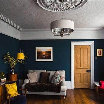 Hague Blue Living Room Colour Scheme Is Good. I Like The Big Handle On The  Door