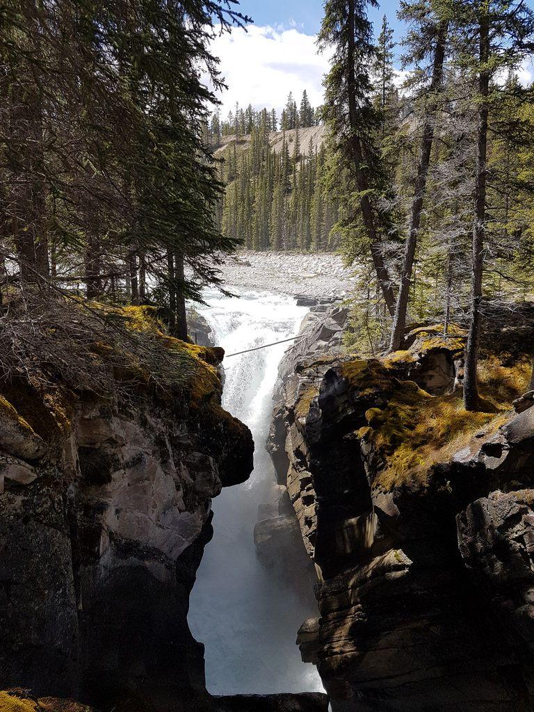 Siffleur Falls Kootenay Plains Ecological Reserve Alberta Canada. [OC] [3024 x 4032] - see http://www.classybro.com/ for more!