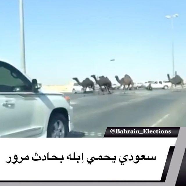 السعودية بالفيديو سعودي يحمي إبله بحادث مرور تسبب مالك إبل بحادث مروري على طريق سريع بمدينة الخبر في السعودية بعدما حاول حم Election Sporty Outfits 90 S
