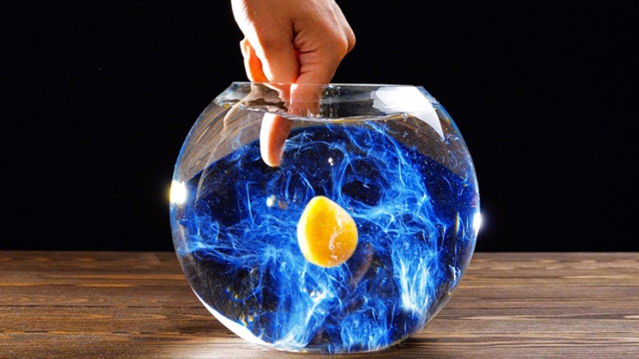 Egg In Vinegar Experiment For Kids in 2020   Egg