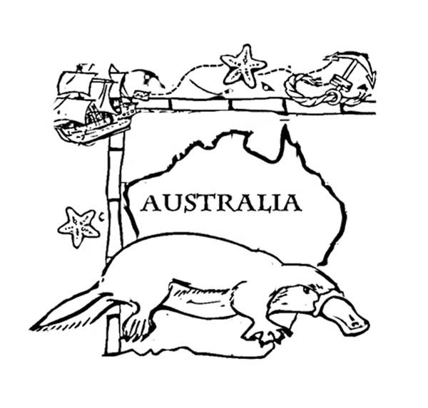 australia day animal coloring page for kids - Australia Coloring Pages Kids