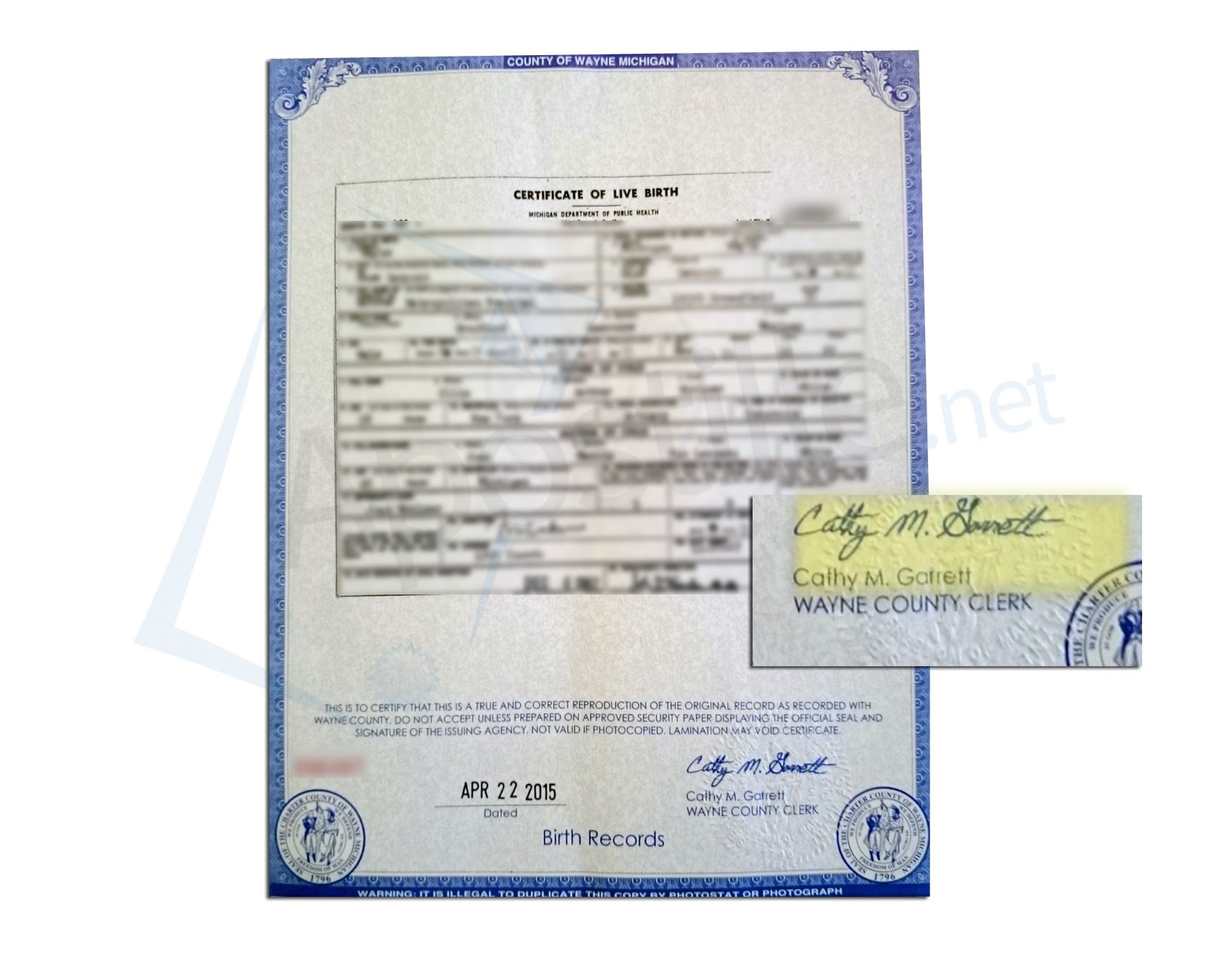 County Of Wayne State Of Michigan Certificate Of Birth Signed By