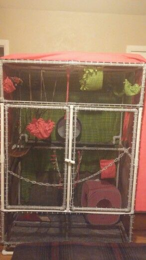 Diy Sugar Glider Cage 5ft Wide 6 Ft Tall 3 Ft Deep All