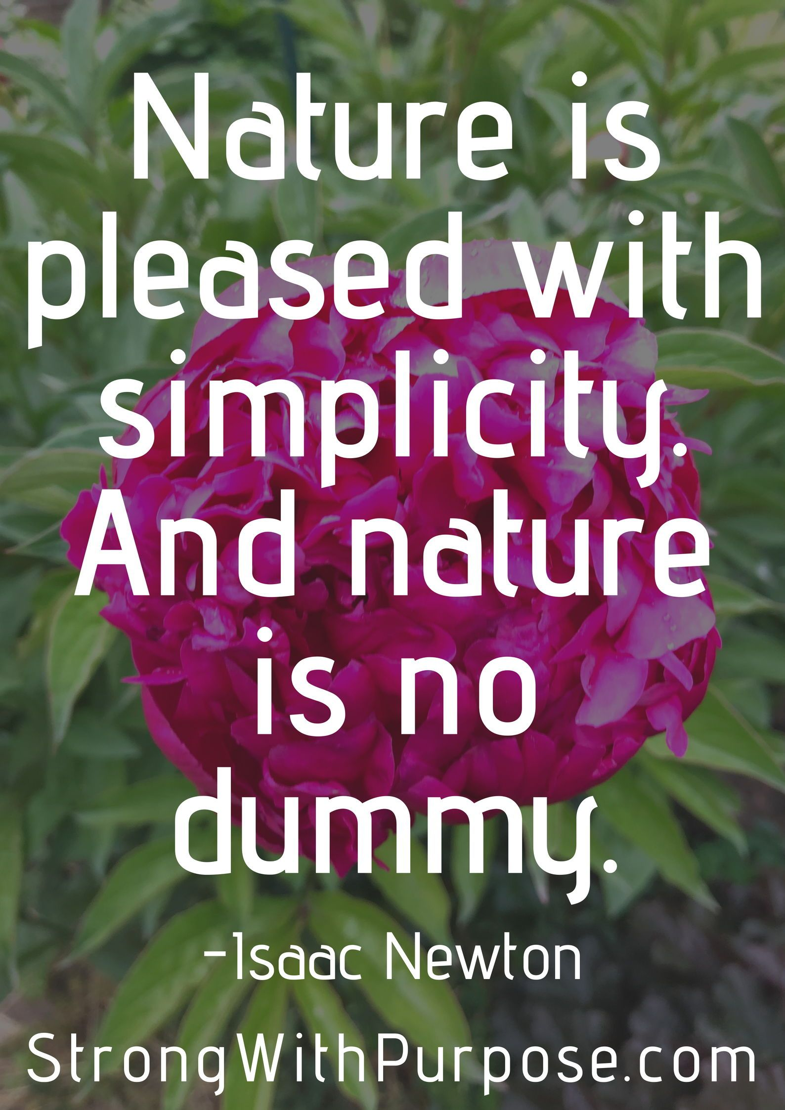 5 Inspiring Simplicity Quotes Simple Sustainable Holistic
