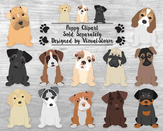 Dog Clipart Bundle Hand Drawn Akc Dog Breeds Small Medium Etsy In 2020 Puppy Clipart Pet Scrapbook How To Draw Hands
