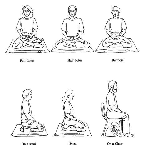 A meditation posture should include three main qualities