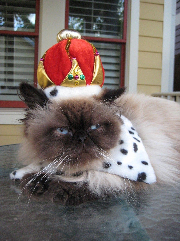 Crown Jewels costume