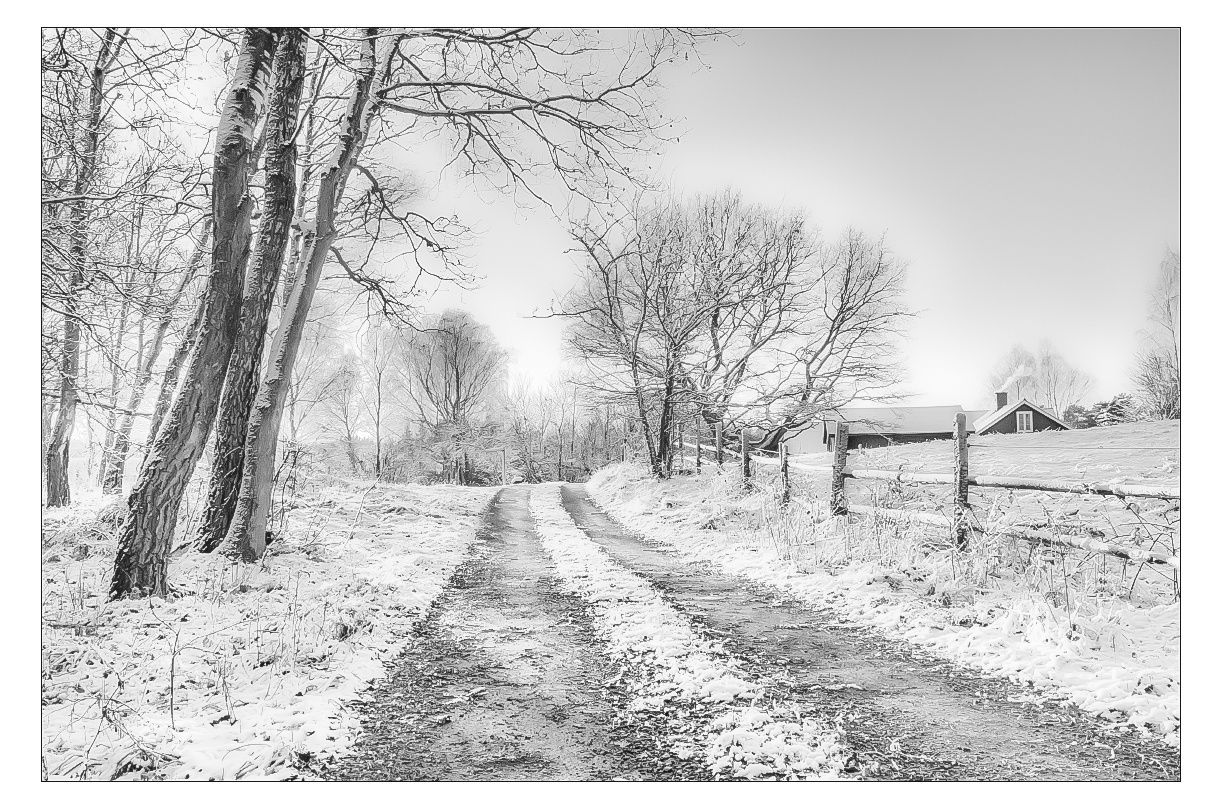 Everyday Walk by Anders Stangl on 500px