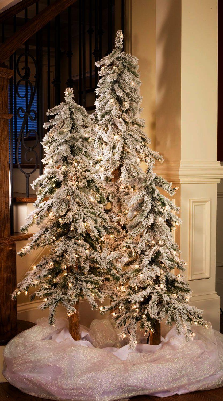 Christmas Tree Emoji Transparent Because Christmas Tree Storage Spotlight Frosted Christmas Tree Skinny Christmas Tree Flocked Christmas Trees