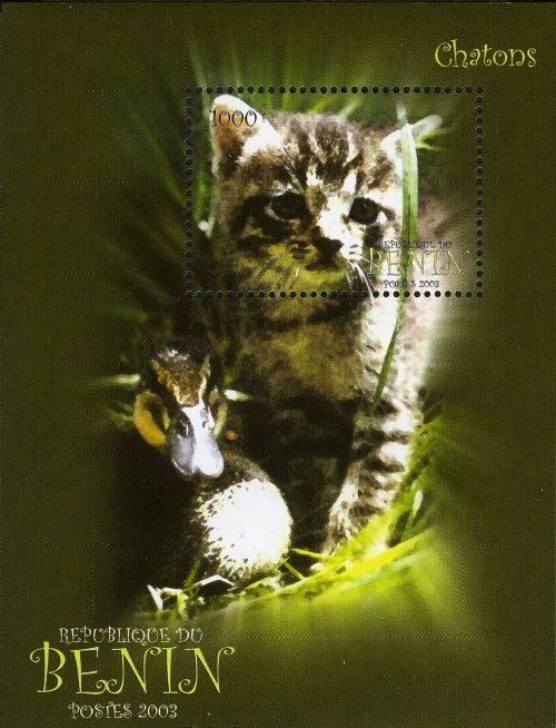Benin 2003 Miniature Sheet Cat Stamp Stamp Collecting Post Stamp