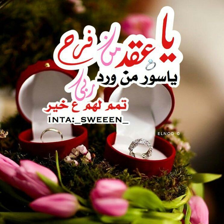 Pin By آلصوت آلعذب On Couples Arabian Wedding Marriage Marriage Life
