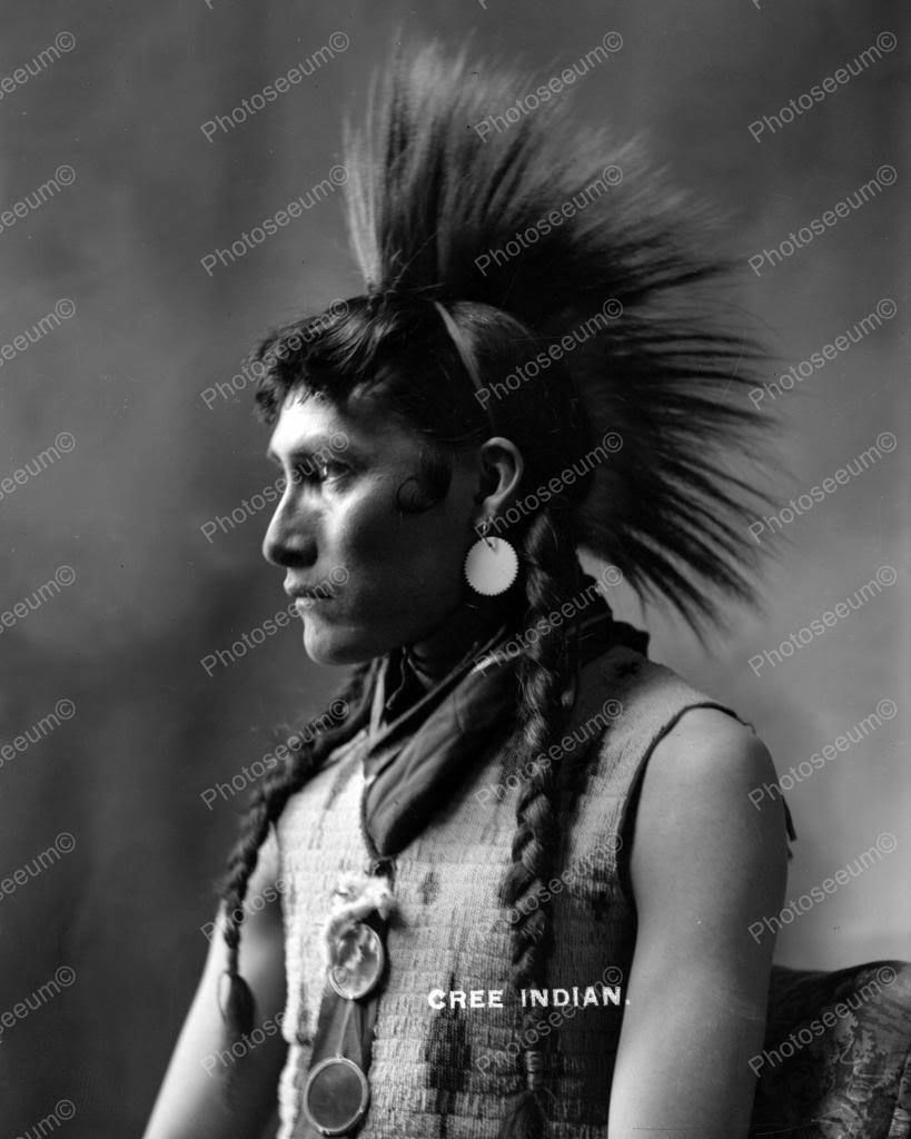 Cree indian vintage x reprint of old photo native american