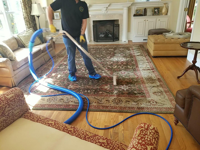 Steam Central Rug In 2020 Carpet Steam How To Clean Carpet Carpet Care
